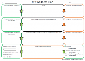 Wellness Plan Diagram